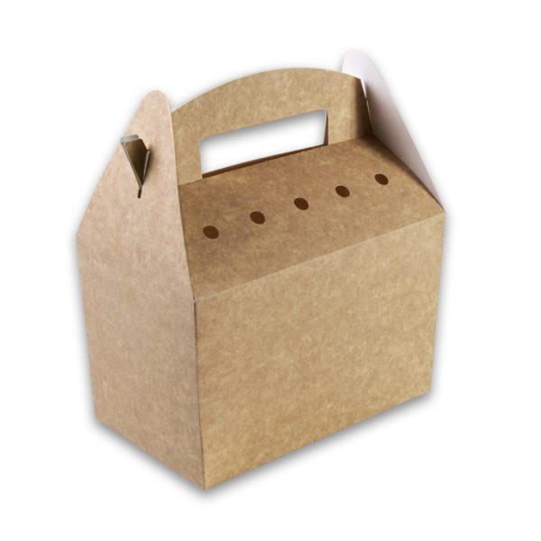 Snackbox met handvat