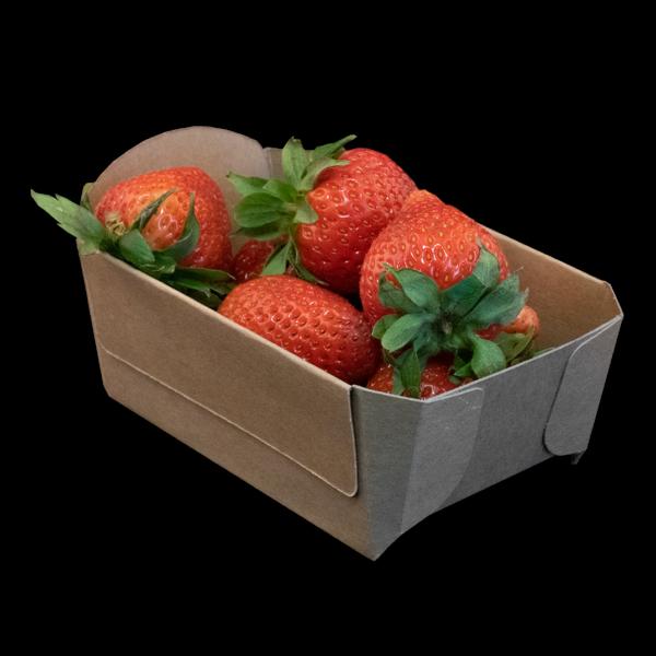 Fonkels Re-fruiter aardbeienbak 250 gram