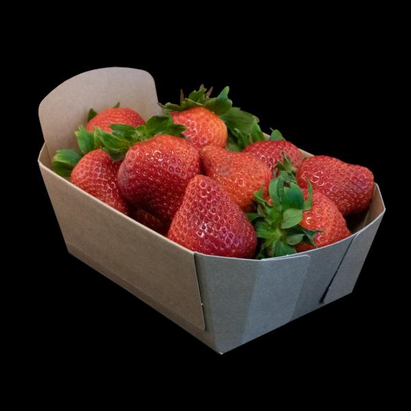 Fonkels Re-fruiter aardbeienbak 500 gram
