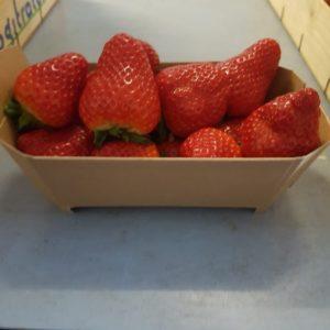 kartonnen-aardbeienbakje-fonkels