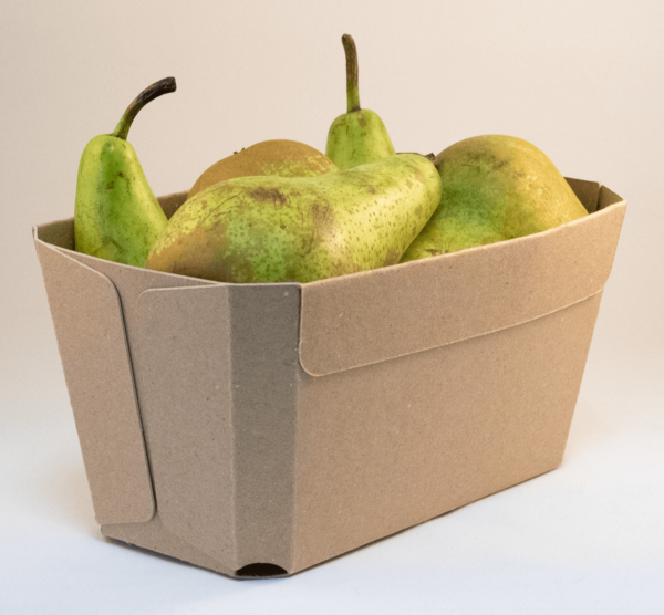 Kilobak-fruit