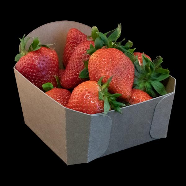 aardbeienbakje-karton